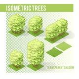 Árvores isométricas 003 Foto de Stock Royalty Free