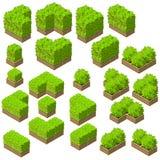 Árvores isométricas do vetor e arbustos decorativos Fotos de Stock Royalty Free