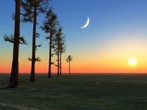 Árvores lua e Sun Foto de Stock Royalty Free
