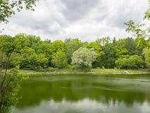 árvores Multi-coloridas pela lagoa fotos de stock
