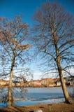 Árvores na área do castelo de Frederiksborg em Hillerod Fotos de Stock