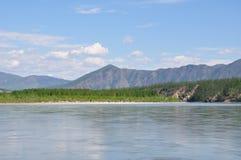 Árvores na costa, as montanhas Fotografia de Stock
