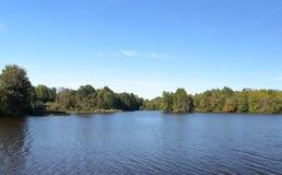 Árvores na costa de um lago azul no fim do verão Fotos de Stock