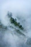 Árvores nas nuvens fotografia de stock