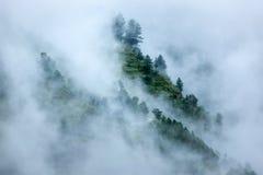 Árvores nas nuvens imagens de stock