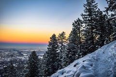 Árvores nevado no por do sol em Boulder, Colorado fotos de stock