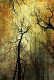 Árvores no fundo do grunge Fotografia de Stock Royalty Free