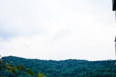 Árvores no monte com nuvens Foto de Stock