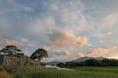 Árvores no por do sol em ruínas do castelo de McCarthy Mor Irish no Lough Leane no anel do Kerry na Irlanda de Killarney imagens de stock royalty free