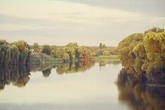 Árvores pálidas do rio da paisagem foto de stock