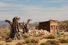 Árvores Parched em um deserto espanhol foto de stock