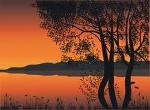 Árvores pelo lago Fotos de Stock Royalty Free