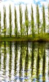 Árvores pelo rio fotografia de stock