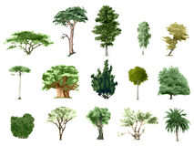 Árvores pintadas da cor Imagem de Stock