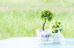 Árvores plásticas Fotos de Stock Royalty Free