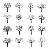 Árvores pretas ajustadas com folhas Foto de Stock Royalty Free