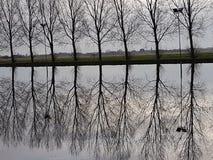 Árvores que refletem na água de uma corte do gelo no parque Hitland onde a geada não congelou a água ainda Fotografia de Stock Royalty Free