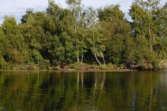 Árvores refletidas no canal de navio Fotos de Stock