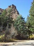 Árvores sempre-verdes e Rocky Outcrop, Colorado fotos de stock