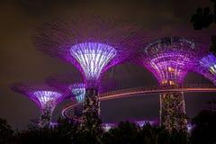 Árvores super em Singapore fotos de stock