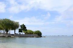 Árvores tropicais da costa da ilha, vegetação das gramas no resort da ilha Fotos de Stock Royalty Free