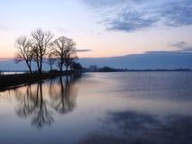 Árvores velhas perto da maneira e do campo de inundação no tempo do por do sol, Lituânia fotografia de stock