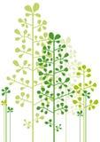 Árvores verdes abstratas ilustração do vetor