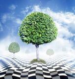 Árvores verdes, céu azul com nuvens e tabuleiro de damas abstrato Imagens de Stock