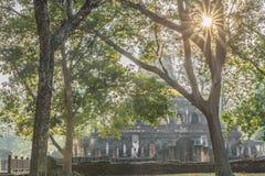 Árvores verdes com fundo do pagode em ayutthaya Tailândia Fotografia de Stock Royalty Free