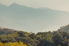 Árvores verdes contra o fundo nevoento da montanha, ilha de Lantau, China fotografia de stock