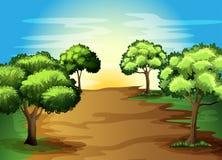 Árvores verdes crescentes na floresta ilustração do vetor