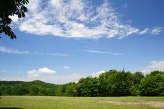 Árvores verdes e céu azul imagem de stock royalty free