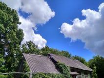 Árvores verdes e uma casa contra um céu azul bonito com nuvens brancas em uma vila do russo fotografia de stock royalty free