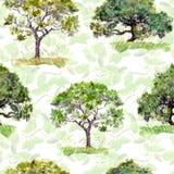 Árvores verdes Parque, teste padrão da floresta Fundo sem emenda do vetor com folhas watercolor Imagens de Stock Royalty Free