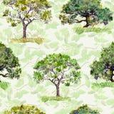 Árvores verdes Parque, teste padrão da floresta Fundo sem emenda do vetor com folhas watercolour Fotos de Stock Royalty Free