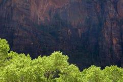 Árvores verdes, rochas vermelhas fotografia de stock