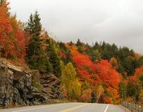 Árvores vermelhas de ardência e uma estrada Imagens de Stock Royalty Free