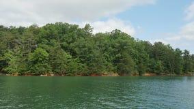 Árvores vistas transversalmente de um lago Imagens de Stock