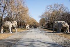 Ásia China, Pequim, Ming Dynasty Tombs, área cênico, cinzeladura de pedra do deus da estrada imagens de stock