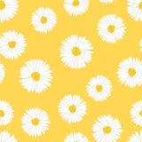 Áster branco, Daisy Seamless no fundo amarelo Ilustração do vetor ilustração stock