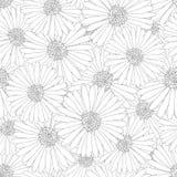 Áster, Daisy Flower Outline Seamless Background Ilustração do vetor ilustração stock