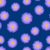 Áster roxo, Daisy Seamless no fundo do azul de índigo Ilustração do vetor ilustração do vetor