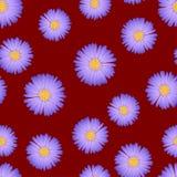 Áster roxo, Daisy Seamless no fundo vermelho Ilustração do vetor ilustração stock
