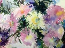 Ásteres coloridos das flores do fundo da arte da aquarela ilustração do vetor