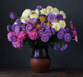 Ásteres e crisântemos Flores em um vaso Fotografia de Stock