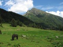 Áustria Fotografia de Stock Royalty Free