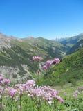 Áustria 2013 fotografia de stock royalty free
