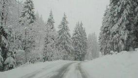 Áustria Conduzindo o tiro, ponto de vista do motorista Metragem que conduz na estrada durante uma queda de neve vídeos de arquivo