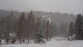Áustria, cumes tiroleses Estrada à passagem da samambaia Paisagem durante uma queda da neve Imagem de Stock Royalty Free