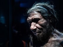 Male Neanderthal replicate exhibited in​ Natural​ History​ Museum, London. Headshot​ of​ male Neanderthal replicate exhibited stock photography